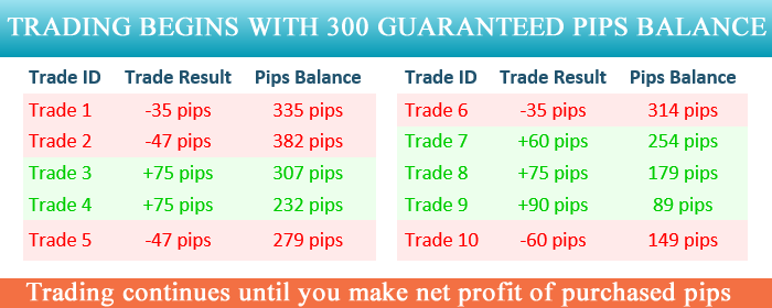 Signalator guaranteed pips calculation example